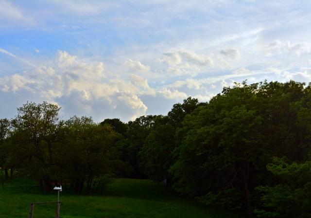 love our Kansas skies