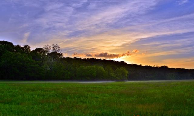 mist evening hayfield