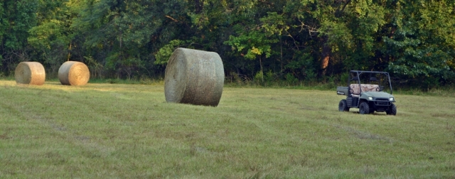 size of bales